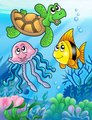 Various sea fishes and animals