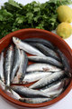 Sardines bread and tomato vertical
