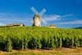 Chenas, Beaujolais, Burgundy, France