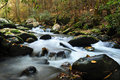 Creek running thru Smoky Mountain National Park