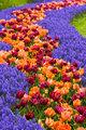 Flowerpath