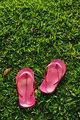 Slippers on grass field