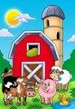 Big red barn with farm animals