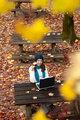 Autumn work