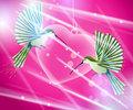hummingbirds flying around pink heart