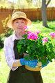 Retired gardener