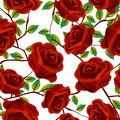 Roses over white, pattern
