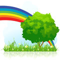 Isolated green tree with rainbow