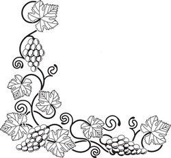 Grape vine design element stock vector