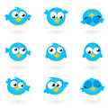 Cute blue vector Twitter Birds icons collection isolated on whit