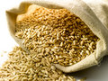 Burlap sack of wheat