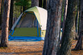 Tent Camping in the Woods