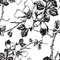 seamless floral monochrome pattern (vector)