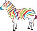 Multicolored Zebra