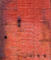 Old Rusted Steel Door