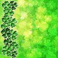 Lucky Four Leaf Clover Shamrock on Blurred Background