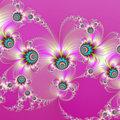Pink Fractal Fireworks