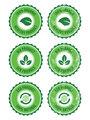 Green 100% organic natural eco product retro labels