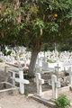 Crosses in an Ecuadorian Cemetery
