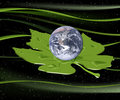 Earth In A Leaf
