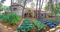 Stone village garden with vegetables