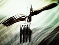 Pair. Abstract kitchen still life with two fork