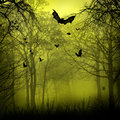 Abstract Halloween backgrounds with copy space for your design
