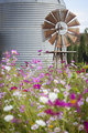 Antique Farm Windmill and Silo in a Flower Field